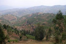 Le mille colline del Rwanda (foto di Jonathan Serex)