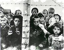 the holocaust a crime against humanity essay This essay has been submitted by a law student this is not an example of the work written by our professional essay writers genocide war crimes and crimes against.