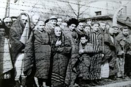 Prigionieri ad Auschwitz